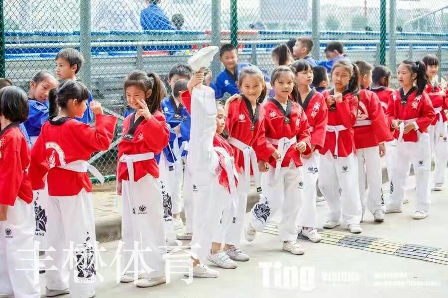 跆拳道-4