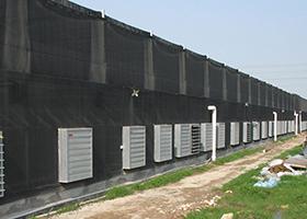 溫室大棚場通風降溫案例