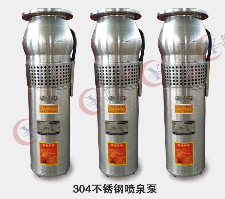 304 316不锈钢耐腐蚀喷泉潜水泵