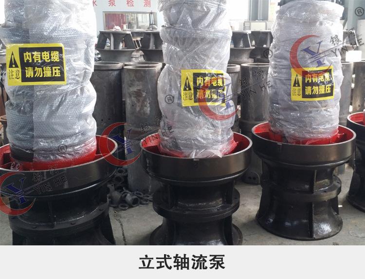 大型无堵塞排污泵 污水工程用潜水泵