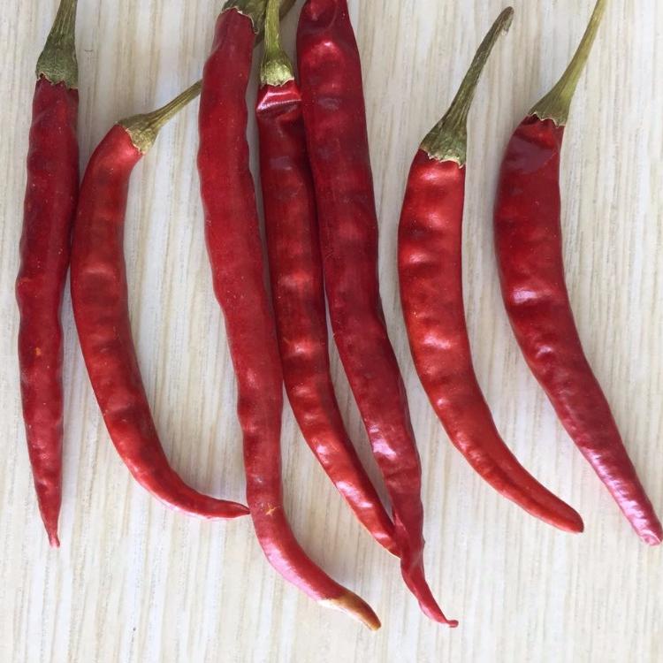 75e98a1dc243e20fda5e77e4197a9431_Yunnan-chilli