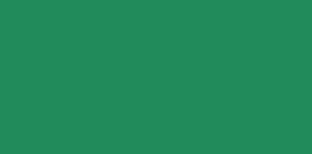 绿色-01