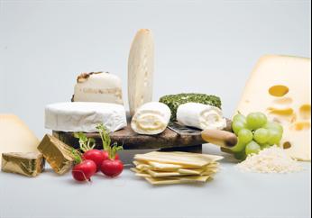 奶酪和仿真奶酪