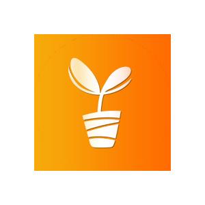 种子种苗1