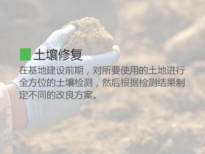 土壤修復1