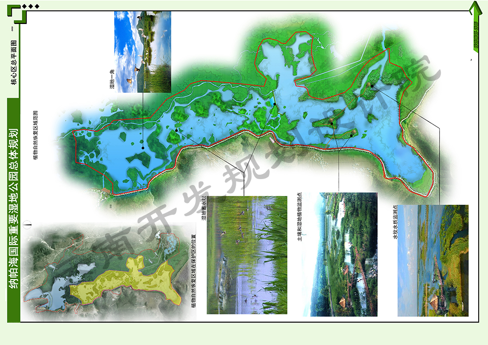 Y2植物自然恢复区域