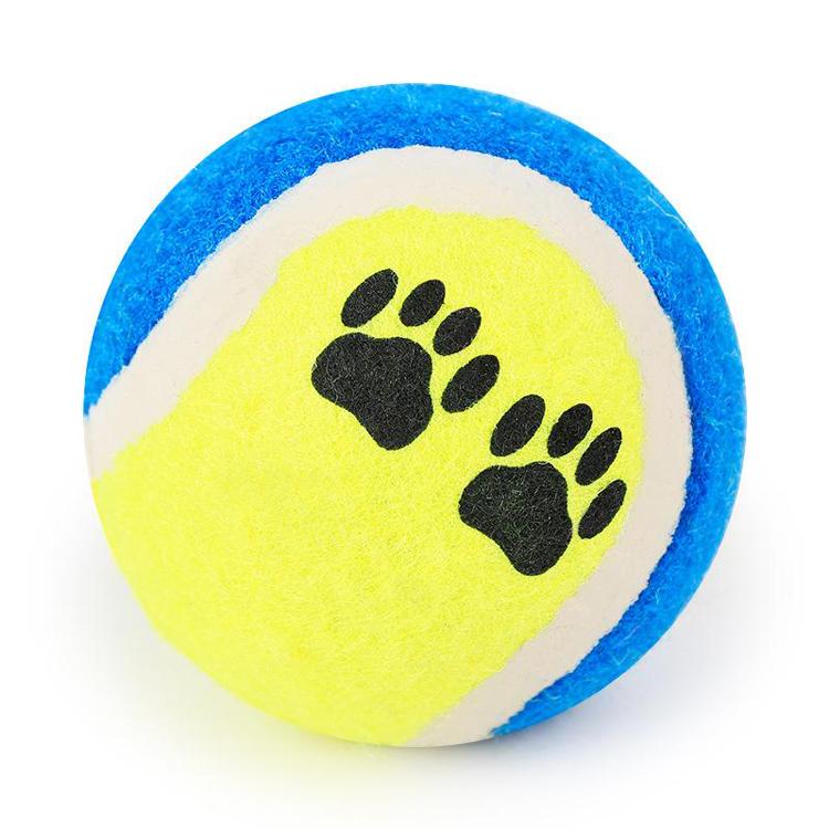 寵物玩具球