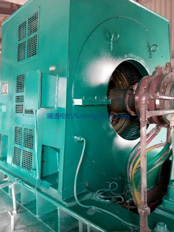 高压电机保养YR800KW---8极