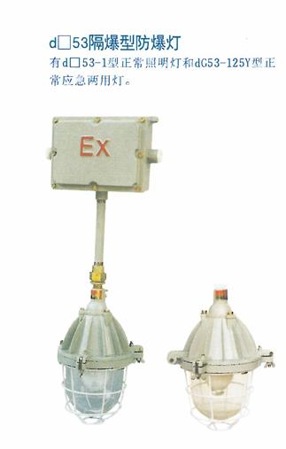 D53隔爆型防爆灯
