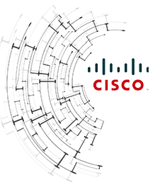 cisco_left