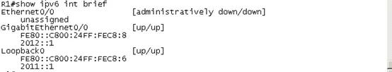 基本的IP地址配置.webp