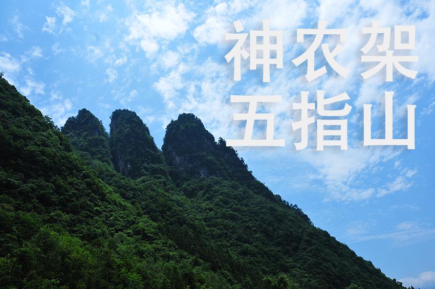 神农奇峰爆款导图01