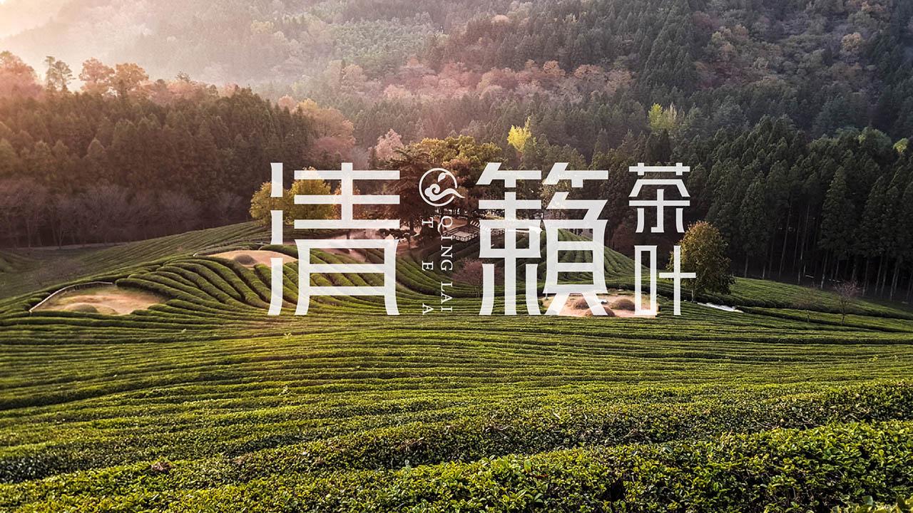 清籁茶品牌形象设计04