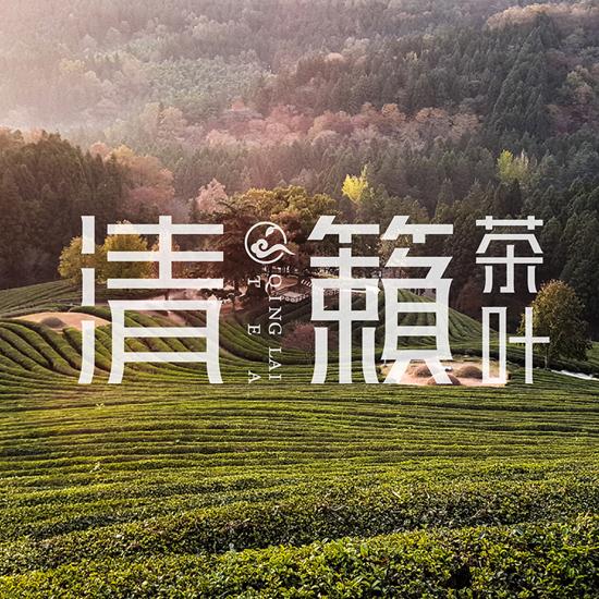 清籁茶logo