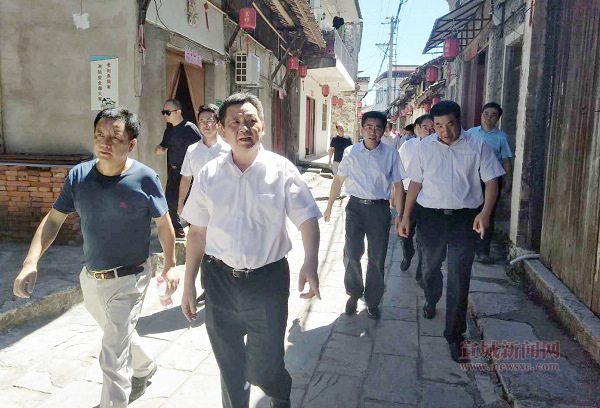 陶方启到宣州区水东镇调研乡村振兴及脱贫攻坚工作3