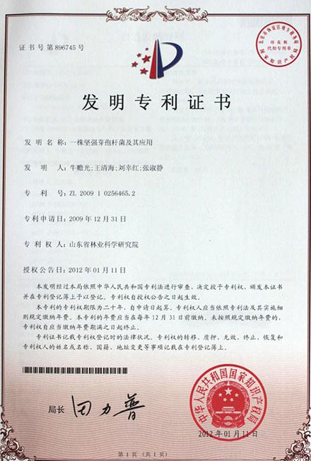 堅強芽孢桿菌國家專利
