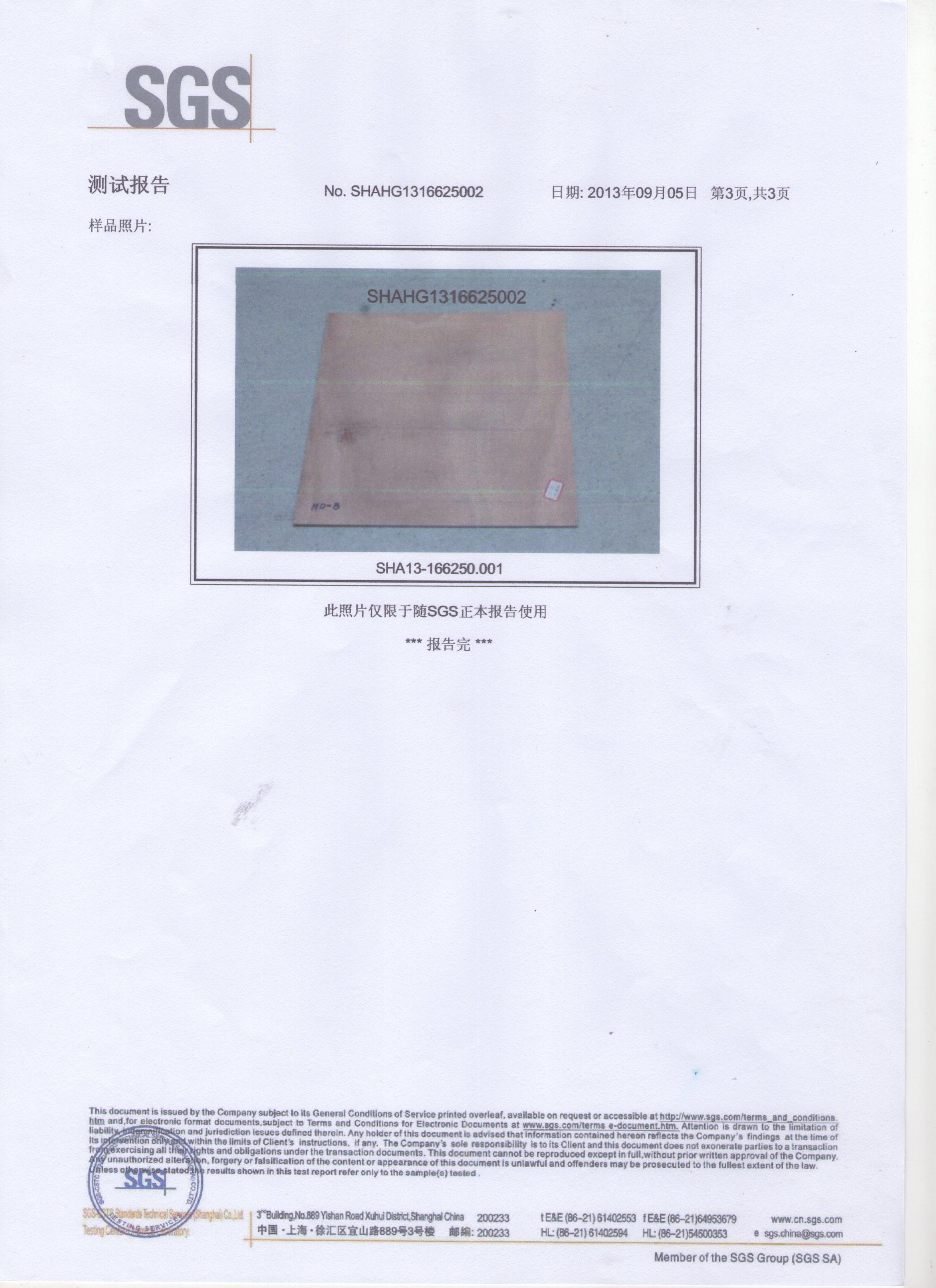 SGS检测讲演处置惩罚样003