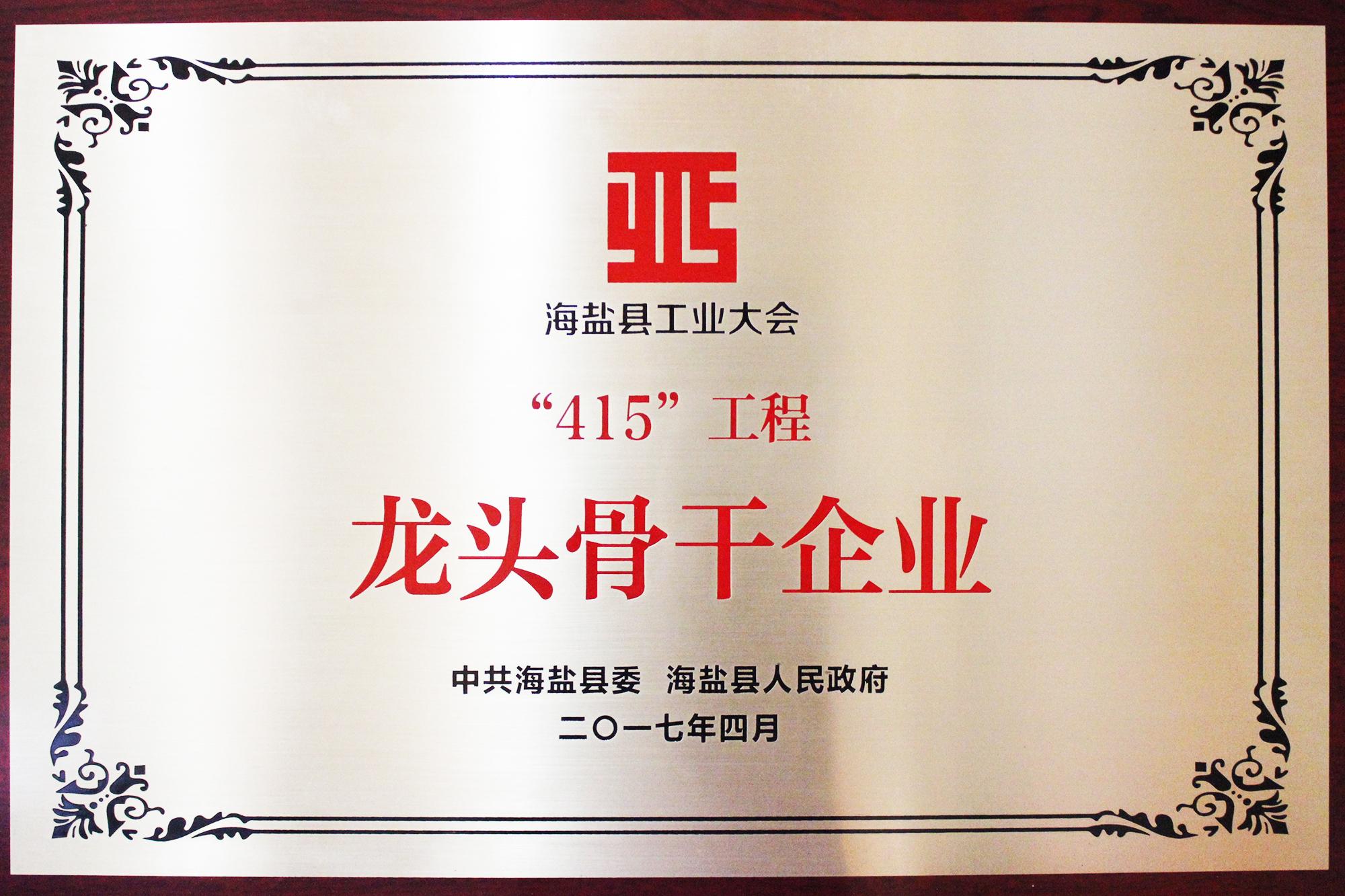 415工程龙头骨干企业201704