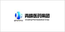江西青峰药业有限公司