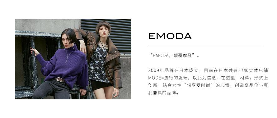 EMODA新案例