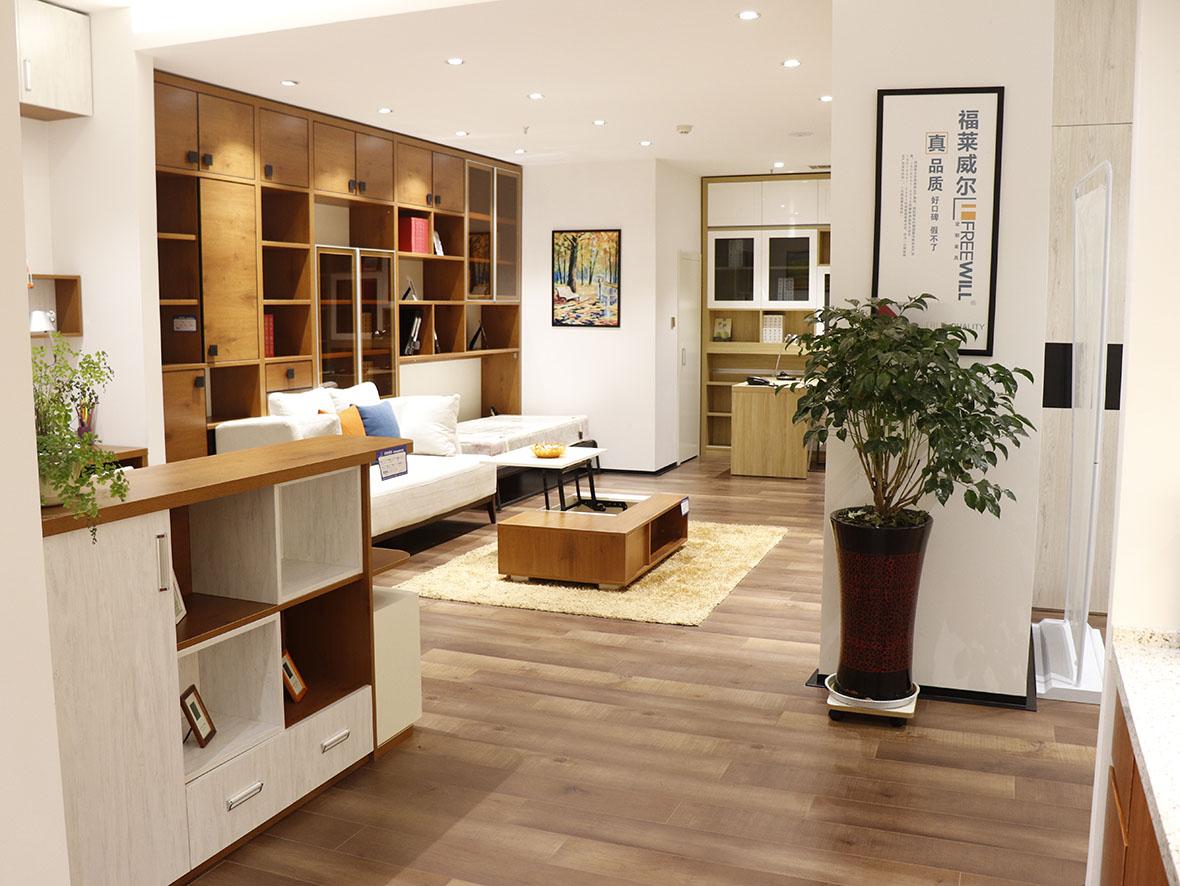 福萊威爾定制家具-客廳3
