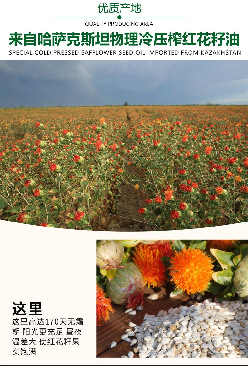 红花籽油详情_04