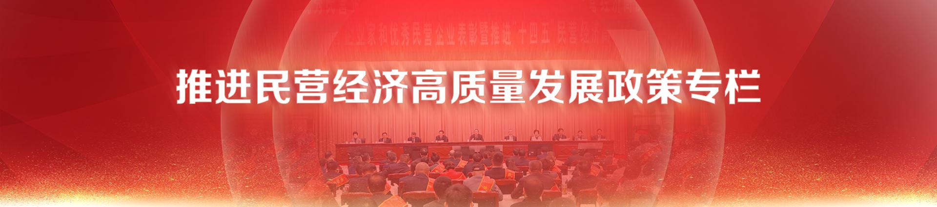 阜陽市推進民營經濟高質量發展政策專欄