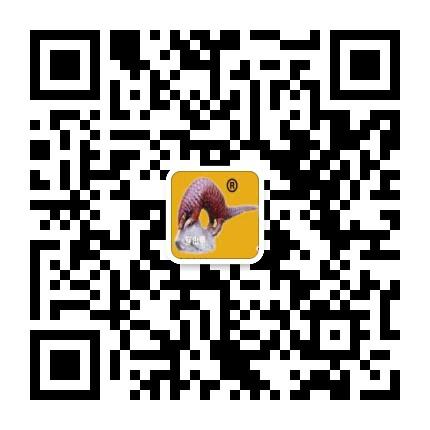 微信15179911988
