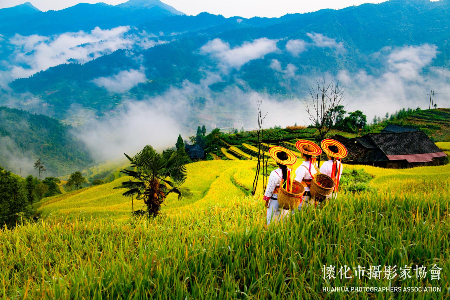 家乡美摄影:雷文录溆浦13548990388