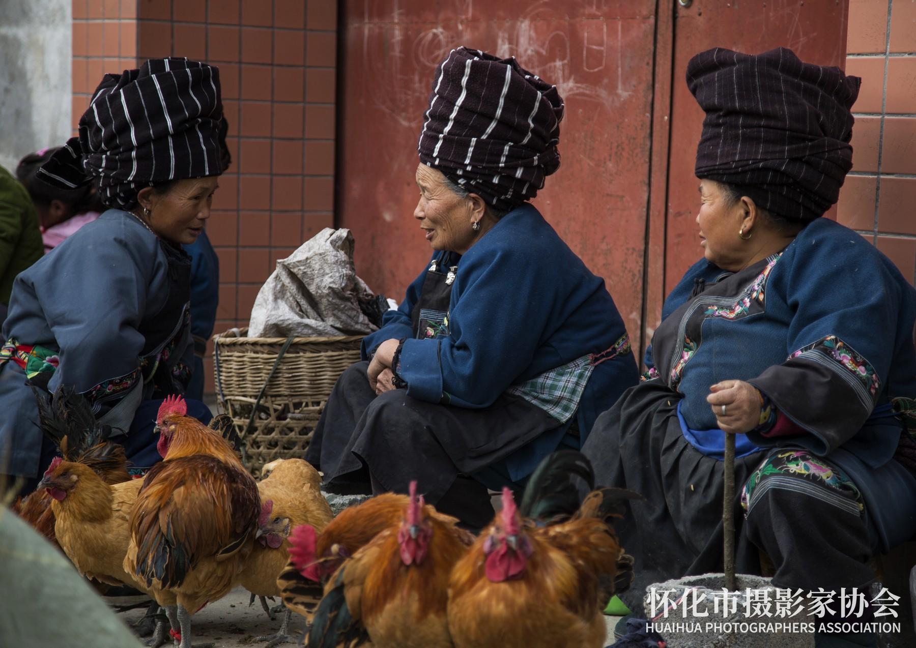 《卖鸡的阿婆》吴晓丽