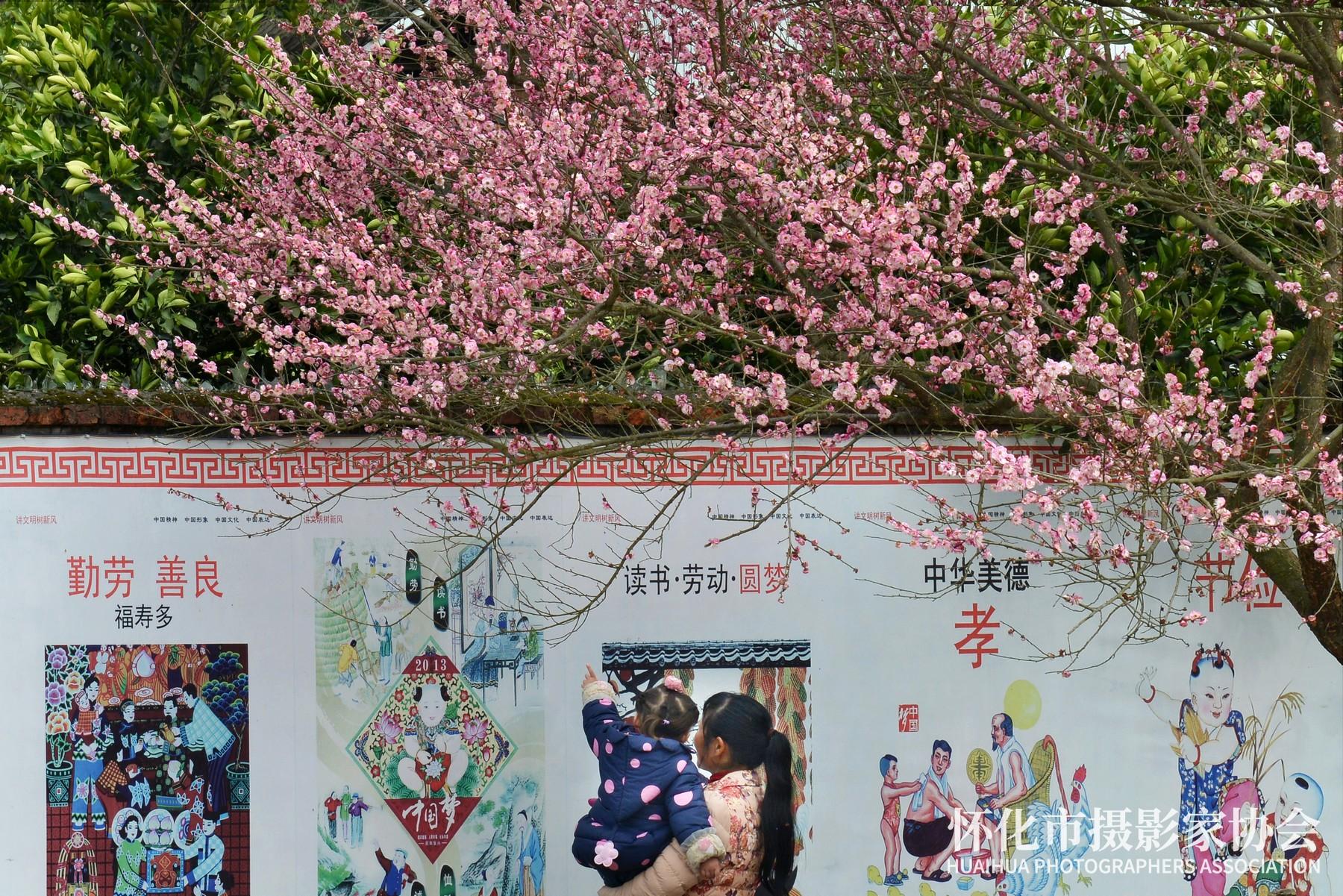 《乡村文化墙》杨锡建