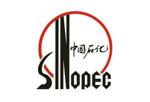 纬来体育高清在线科技合作伙伴,中国石化