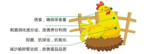 禽舒保加強型2