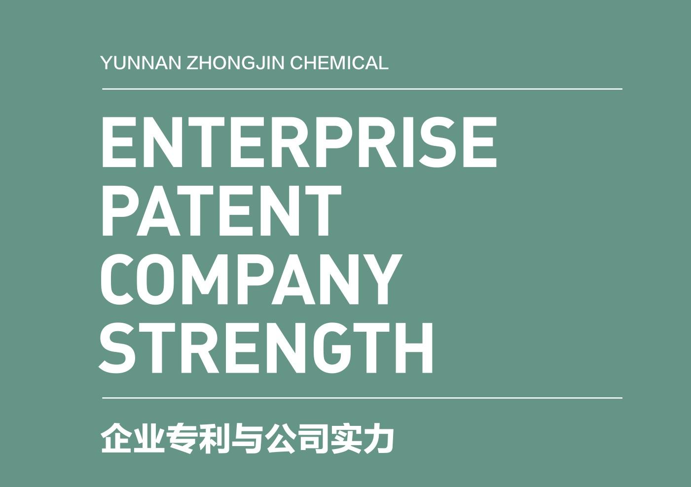公司實力logo