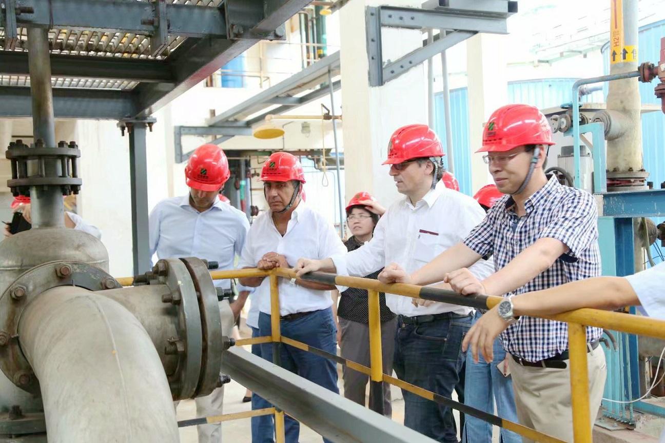 意大利布西化學有限公司2萬噸/年亞氯酸鈉