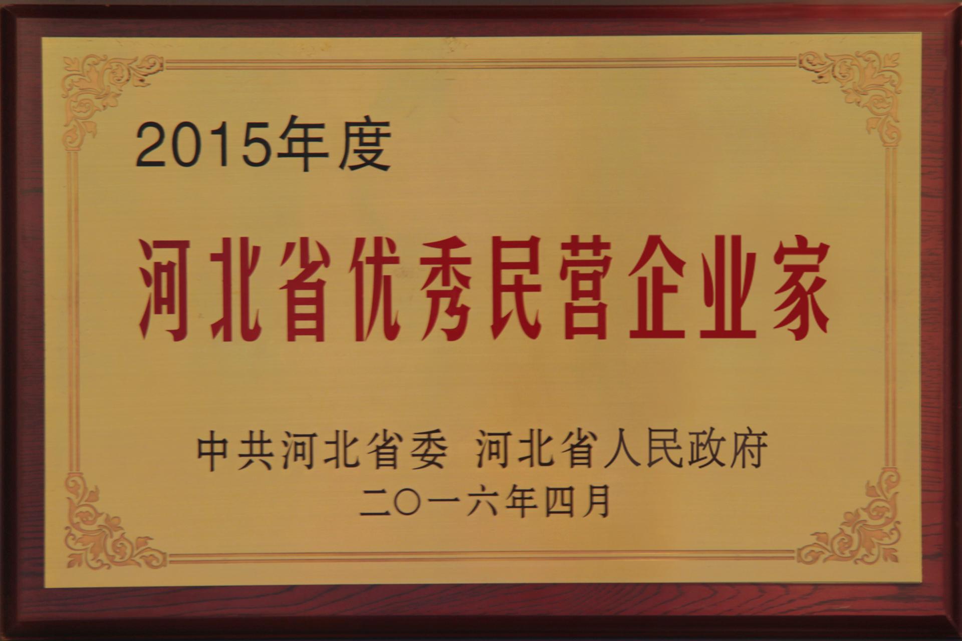 河北省優秀民營企業家