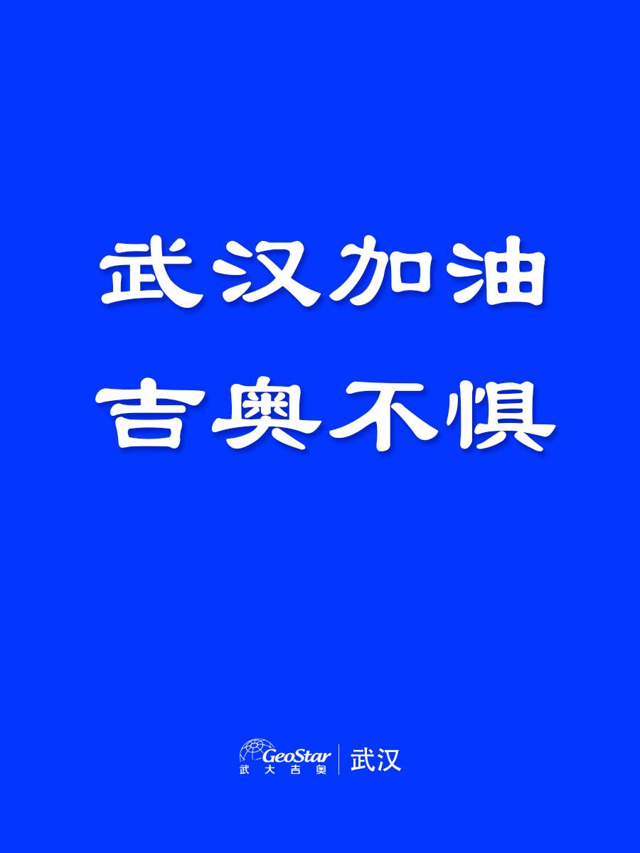 武汉加油十博不惧蓝色