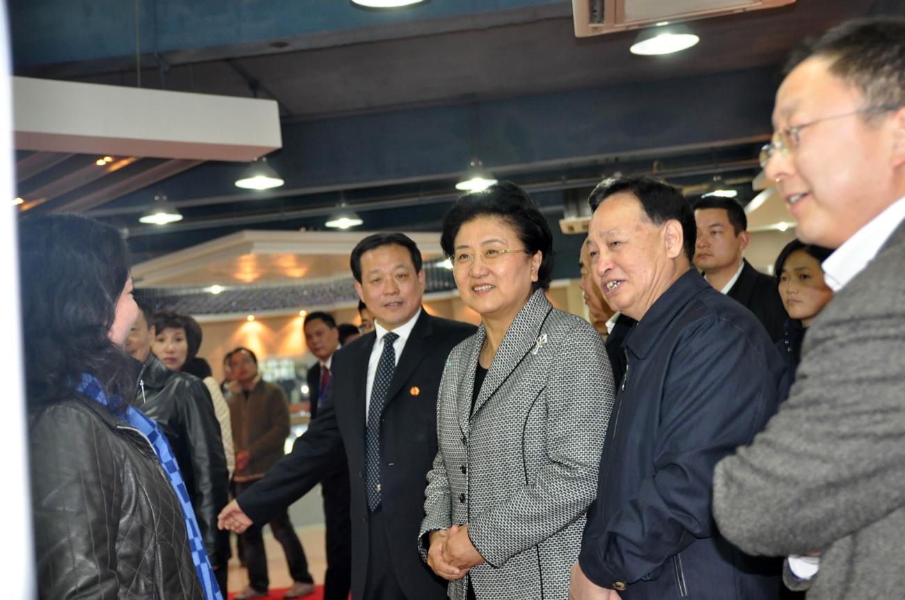 03.2009年11月,時任中央政治局委員劉延東駐足吉奧展臺視察指導。