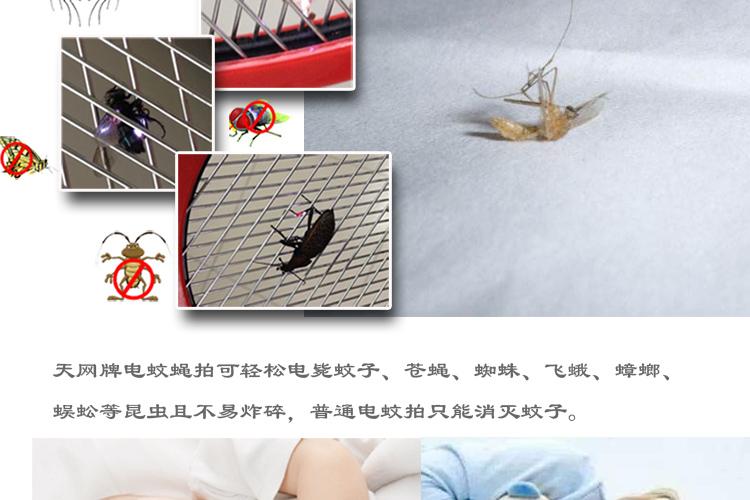 images-天网牌03分销-恢复的_18