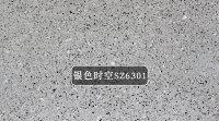 銀色時空SZ6301
