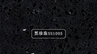 黑珍珠SS1005