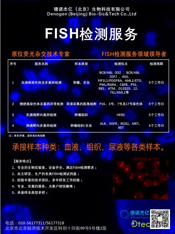 FISH海報-1