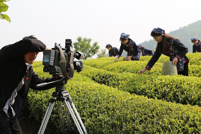安徽衛視新聞聯播記者再赴茶業集團作品牌故事采訪錄制