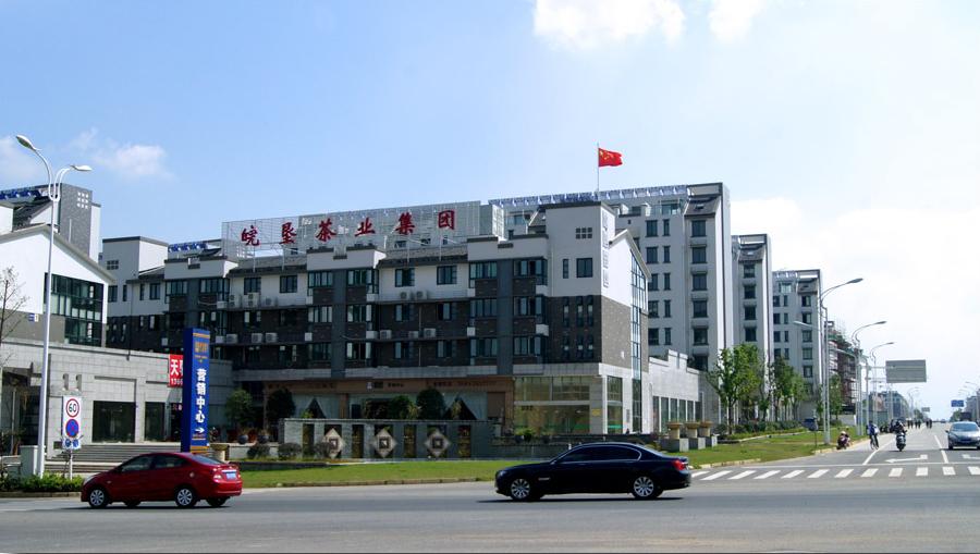 皖垦茶业集团办公楼