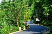 青山湖騎行5