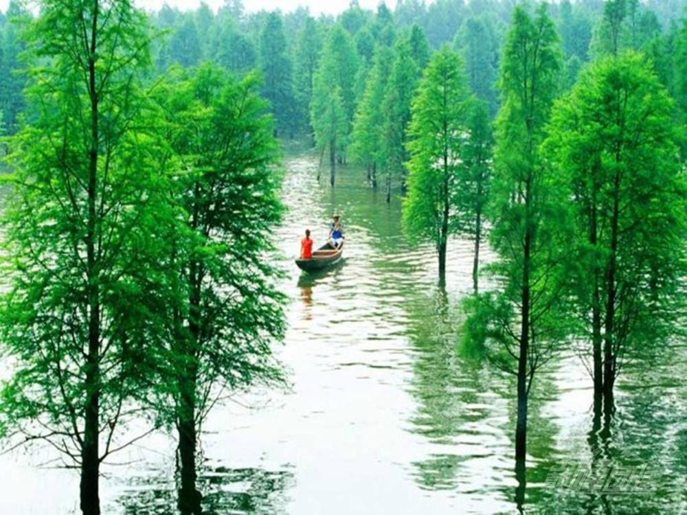 青山湖騎行11