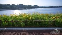 千島湖騎行9