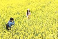 桐洲島賞花11