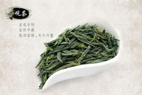 六安瓜片是什么茶