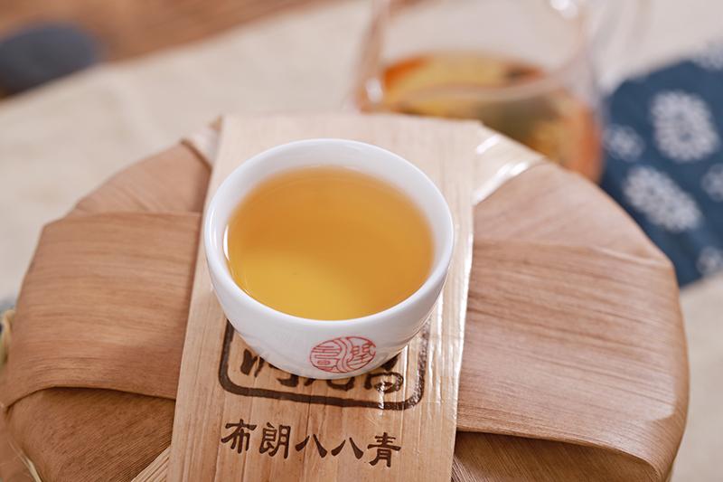 普洱茶怎么分辯生茶熟茶